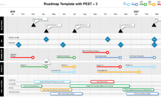 Roadmap with PEST factors, milestones and KPIs